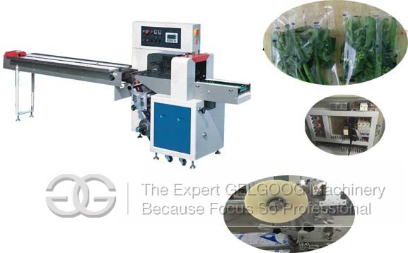vegetable pillow type packaging machine manufacturer