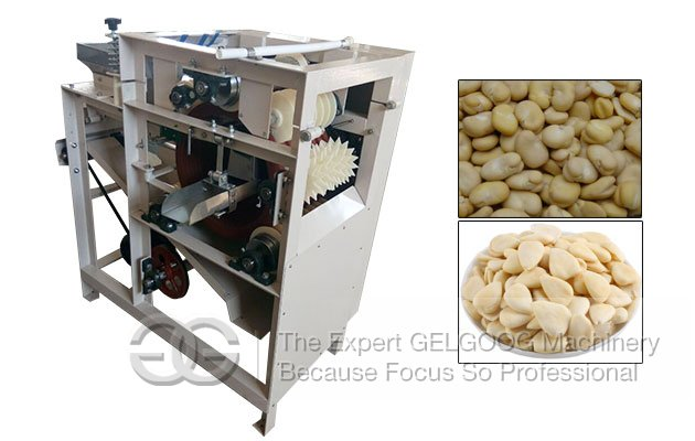 Wet Type Almond Peeling Machine|Broad Bean Peeler Machine