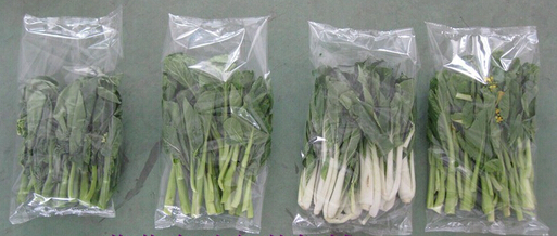 vegetables packing